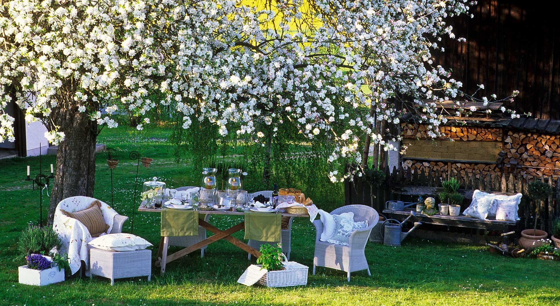 5 trucchi per la festa in giardino aia food for Allestimento giardino
