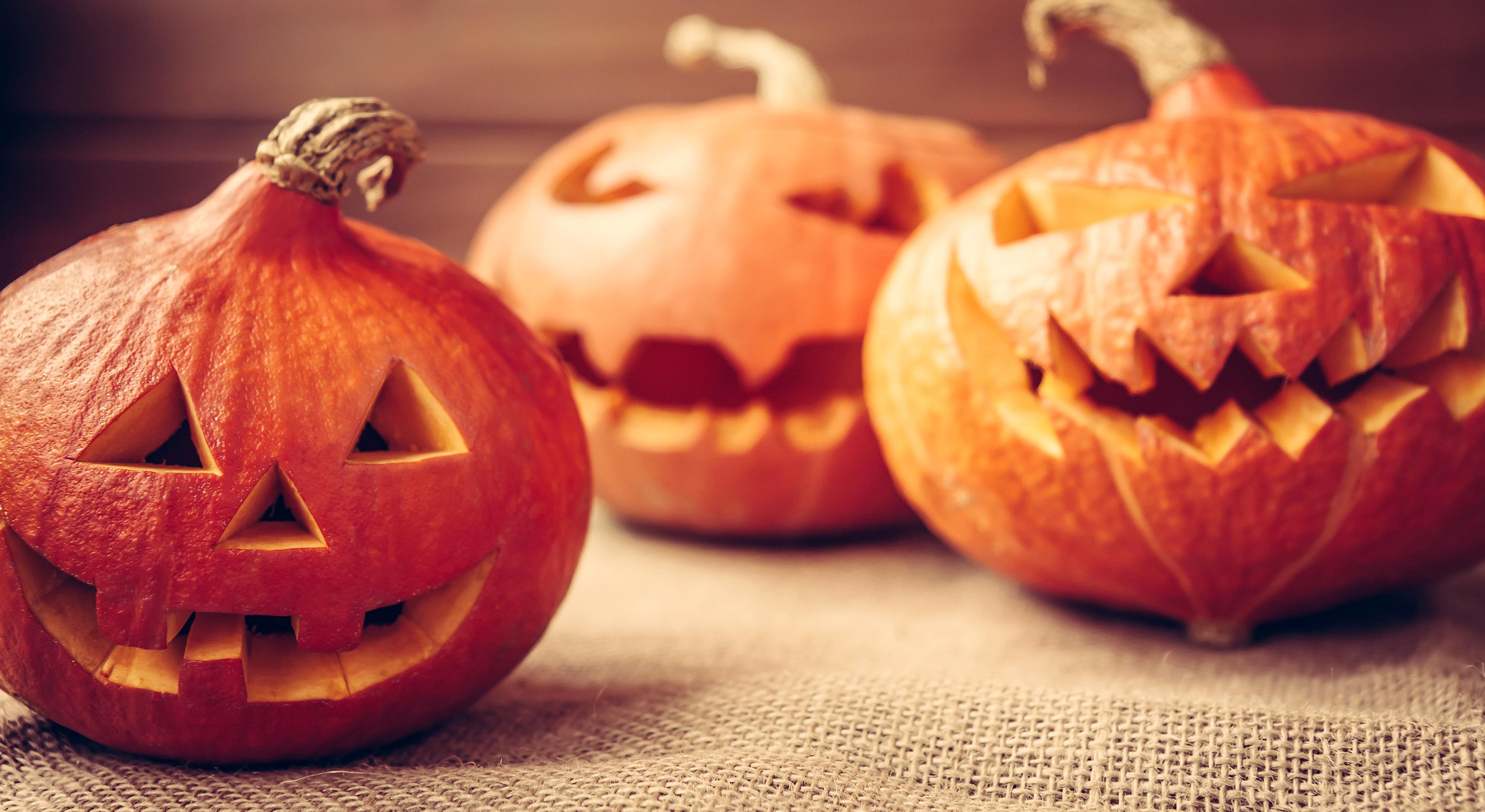 Intagliare Zucca Per Halloween Disegni search | aia food